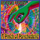 A Pinch Of Psychedelic by Various Artists