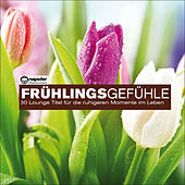 Frühlingsgefühle...30 Lounge Titel für die ruhigen Momente im Leben by Various Artists