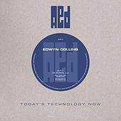 Dilemna by Edwyn Collins