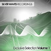 Silver Waves Exclusive Selection Volume One - EP by Various Artists