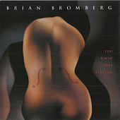 You Know That Feeling by Brian Bromberg