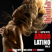 Amor Latino, Vol. 5 - 15 Big Latin Hits & Latin Love Songs (Bachata, Merengue, Salsa, Reggaeton, Kuduro, Mambo, Cumbia, Urbano, Ragga) by Various Artists