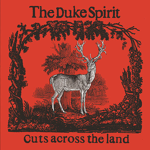 Cuts Across The Land by The Duke Spirit