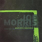 Beautiful Existence by Joe Morris