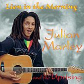 Lion In The Morning by Julian Marley