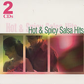Hot And Spicy Salsa Hits by The Countdown Singers