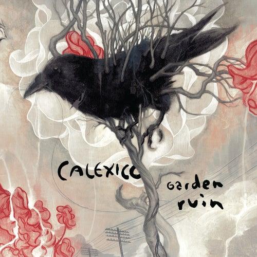 Garden Ruin by Calexico