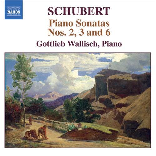 Schubert: Piano Sonatas Nos. 2, 3 And 6 by Franz Schubert