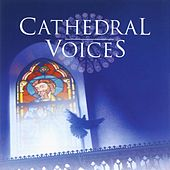 Cathedral Voices - Sacred Choruses by Terry Edwards