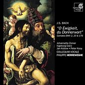 J.S. Bach: Cantatas BWV 2, 20 & 176 by Various Artists