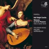 Purcell: Odes for Saint Cecilia's Day von Collegium Vocale Gent and Philippe Herreweghe