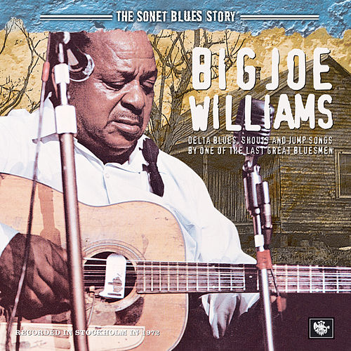 The Sonet Blues Story by Big Joe Williams