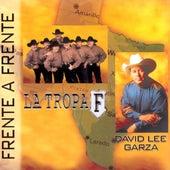 Solamente Exotos: Frente a Frente by David Lee Garza