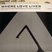 Where Love Lives - Remixes by Alison Limerick