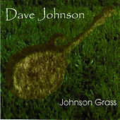 Johnson Grass by David Johnson