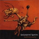 Endangered Species by David Schumacher