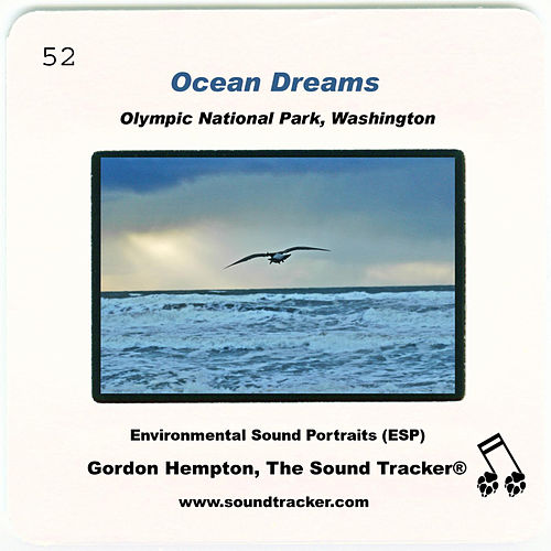 Ocean Dreams by Gordon Hempton
