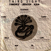 Symbionese Liberation Album by Third Sight