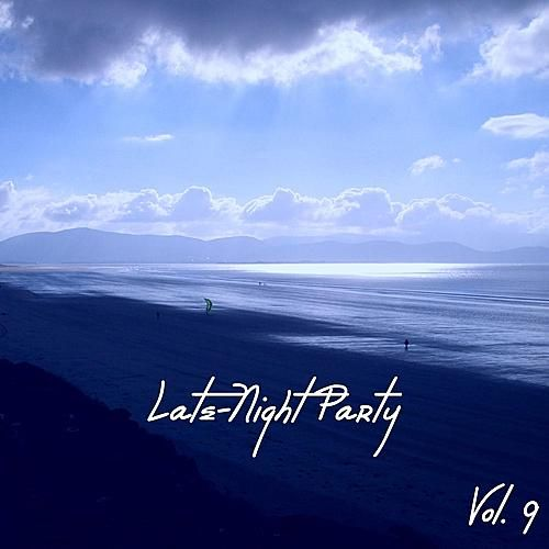 Late - Night Party Vol. 9 by Various Artists