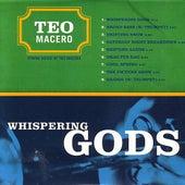 Whispering Gods by Teo Macero