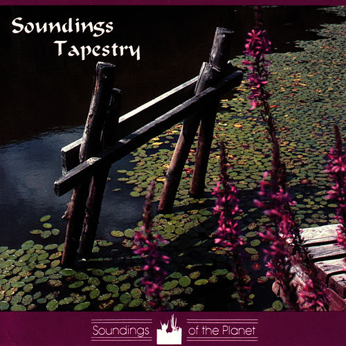 Soundings Tapestry by Dean Evenson