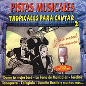 Pistas Musicales Tropicales Para Cantar 2 by Various Artists