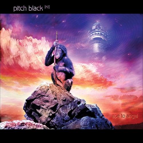 Ape to Angel by Pitch Black [nz]