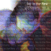 Joy in the New by Andersen Silva