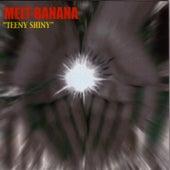 Teeny Shiny by Melt-Banana