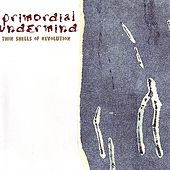 Thin Shells of Revolution by Primordial Undermind