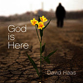 God Is Here: Liturgical Music for the Journey of Reconciliation by David Haas