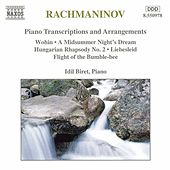 Piano Transcriptions and Arrangements by Various Artists
