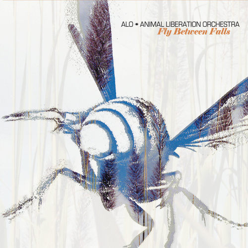 Fly Between Falls by ALO (Animal Liberation Orchestra)