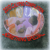2010 Calypso Compilation – Something Special by Various Artists