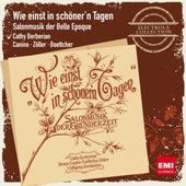 Wie einst in schöner'n Tagen - Salonmusik der Belle Epoque by Various Artists