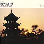 New World Groove 01 by Various Artists