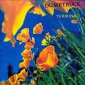 Terminal by Dumptruck
