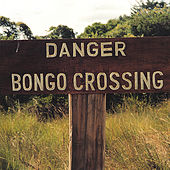 Danger Bongo Crossing by Bossa Nova Beatniks