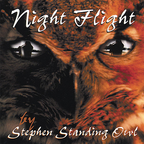 Night Flight by Stephen Standing Owl