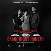 Damn Right Honey ! (Sings of Love, Loss, Life & Death) by Hillbilly Moon Explosion