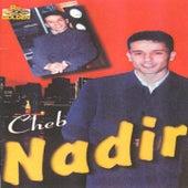 Malek ha gualbi by Cheb Nadir