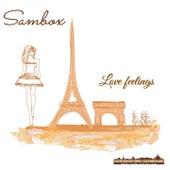 Love Feelings by Sambox
