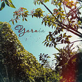 Yarnia by Yarn