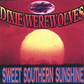 Sweet Southern Sunshine by The Dixie Werewolves