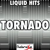 Tornado - A Tribute to Little Big Town by Liquid Hits