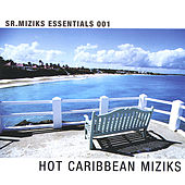 Hot Caribbean Miziks by Various Artists