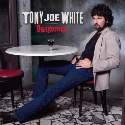 Dangerous by Tony Joe White