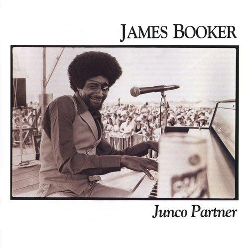 Junco Partner by James Booker