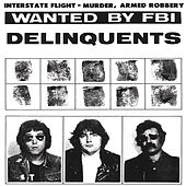 It Is What It Ain't by The Delinquents