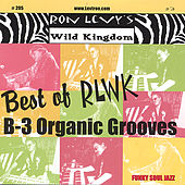 Best Of Rlwk - B-3 Organic Grooves by Ron Levy's Wild Kingdom